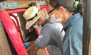 Estudantes participaram de capacitação para aplicar vacina contra brucelose