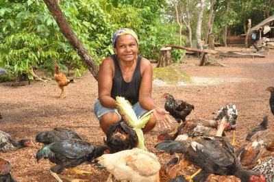 A criação de galinhas é uma das atividades da mulher rural
