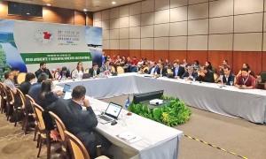 Câmara Setorial do Meio Ambiente e Desenvolvimento Sustentável se debruçou no Plano de Prevenção e Combate ao Desmatamento Ilegal e Queimadas Regional (PPCDQ)