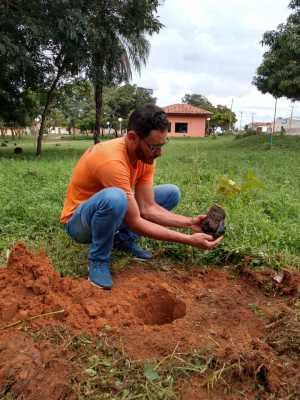 Mudas foram plantadas para garantir preservação de cursos de água