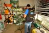 Adapec prorroga prazo por mais 60 dias, o prazo para recadastramento obrigatório de estabelecimentos agropecuários