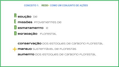 Conceito REDD+