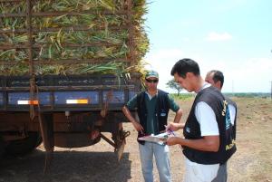 Novo sistema implantado na Adapec permite produtor emitir Permissão de Trânsito de Vegetais (PTV) online no Tocantins