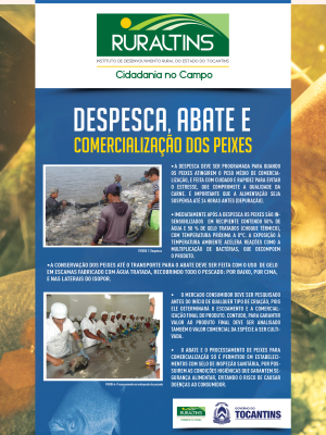 Banner_DESPESCA_ABATE (2)_300.jpg