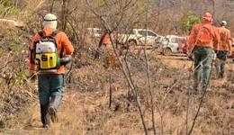 Brigadistas municipais ganham novo prazo para atuação no combate aos incêndios florestais no Tocantins
