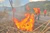 A prática de aceiros negros na rodovia entre Palmas e Lajeado, coloca fim à massa de vegetação seca e contribui para evitar o risco de incêndios florestais