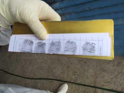 Papiloscopistas do Instituto de Identificação identificam e localizam familiares de cadáver enterrado como indigente