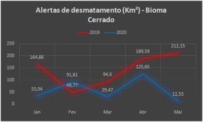 Gráficos comparativos 2019/2020 -