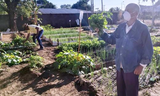 Benjamin Balbino, pai de aluno, foi à escola conferir a produção da horta