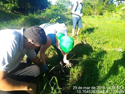 Semana Meio Ambiente Porto
