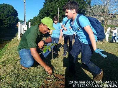 Semana do Meio Ambiente Porto Nacional