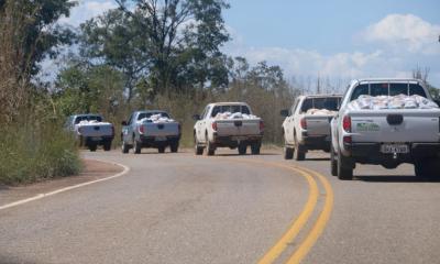 Ação emergencial do Governo do Tocantins contra o novo Coronavírus já chegou a 111 cidades tocantinenses, beneficiando, até o momento, 22.471 famílias de 430 assentamentos rurais