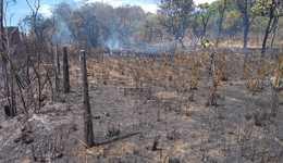 Fogo destruiu área de mais de 50 mil metros quadrados em Paraíso do Tocantins