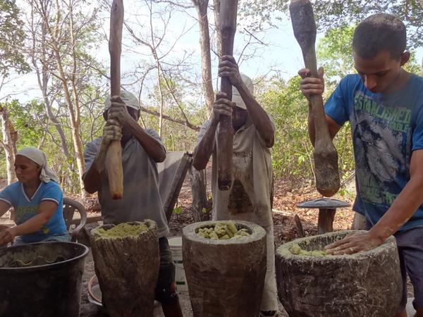 Famílias receberam treinamento e hoje trabalham dentro do conceito de extrativismo sustentável