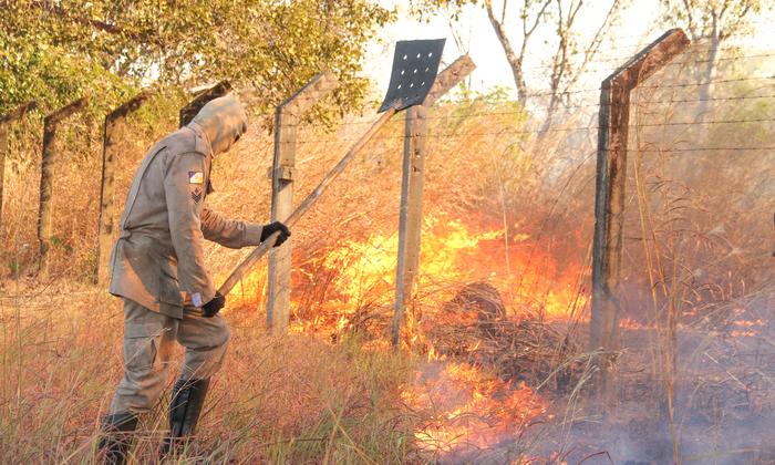 Bombeiros militar atuam em combate a incêndio florestal em Palmas
