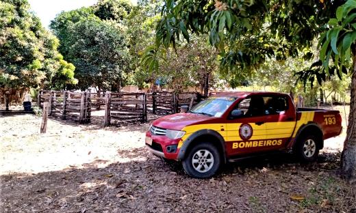 Ação do Corpo de Bombeiros Militar do Tocantins reforça importância da preservação do meio ambiente