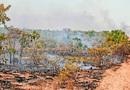 O Tocantins conseguiu reduzir em 21% o número de focos de queimadas em seu território