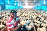 O avicultor Henrique Rodrigues de Souza viu na atividade uma nova alternativa de geração de renda