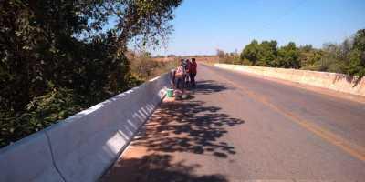 Trabalhos de manutenção nas pontes incluem roçagem e pintura.
