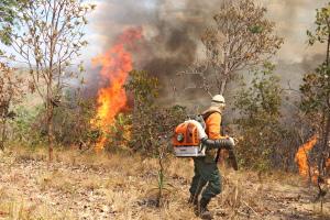 Brigadista do Naturatins realiza combate a incêndio florestal na zona rural de Palmas