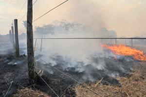 Por onde tem passado, o fogo tem deixado a marca da destruição nas propriedades rurais