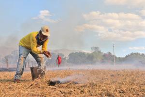 Agricultor apaga fogo no pasto usando um balde e jogando a água com as próprias mãos, em Taquarussu, zona rural de Palmas