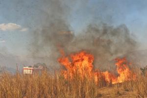 Bombeiros militar se aproxima para combater o fogo em Taquarussu