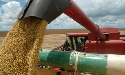 Visita técnica tem como objetivo mostrar uma das regiões que oferecem condição ímpar na produção agrícola