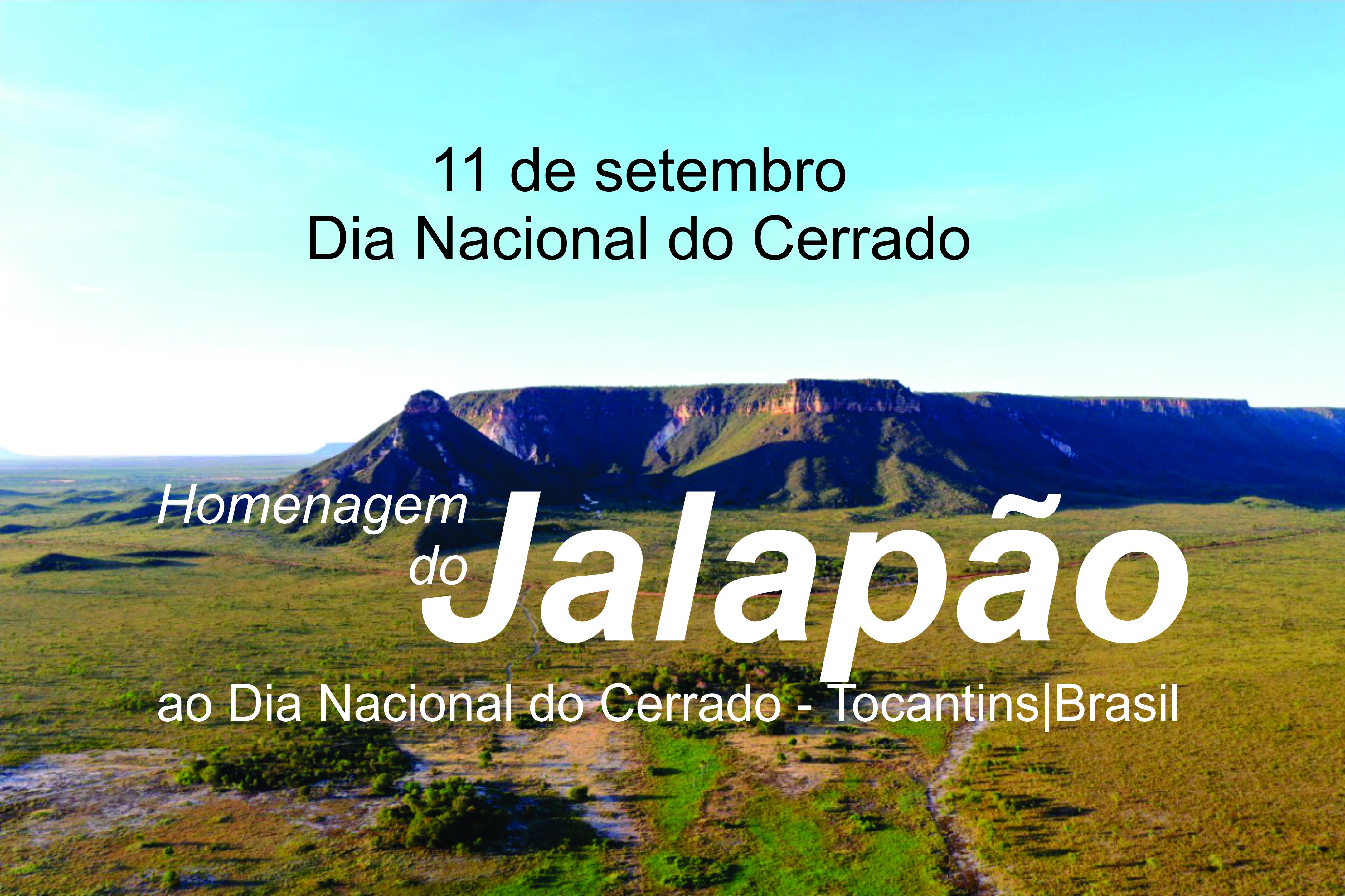 O vídeo traz a voz das comunidades do Jalapão, por meio da iniciativa de produção da equipe da APA do Jalapão em parceria com o Parque Estadual do Jalapão, Prefeitura Municipal de Mateiros e apoio do Governo do Tocantins através do Naturatins