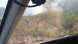Focos de incêndio atingem o Parque Estadual do Cantão