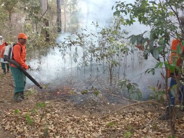Brigadistas do Naturatins combatem as chamas no Parque do Cantão