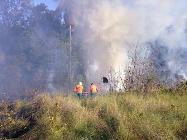 Equipe de combate a incêndios no PEJ trabalharam ininterruptamente durante três dias até eliminar o foco de incêndio