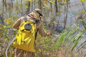 Bombeiro militar usa bomba costal no combate às chamas em Taquaruçu_300.jpg