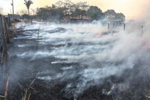 Fogo destrói pastagem à beira da rodovia a caminho de Taquaruçu, Distrito de Palmas