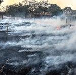 Fogo destrói pastagem à beira da rodovia a caminho de Taquaruçu