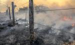 Cerca e pastagem são destruídas pelas chamas que se alastraram na região de Taquaruçu, em Palmas