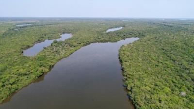 As unidades de conservação incluem os espaços territoriais e seus recursos ambientais, incluindo as águas jurisdicionais, com características naturais relevantes