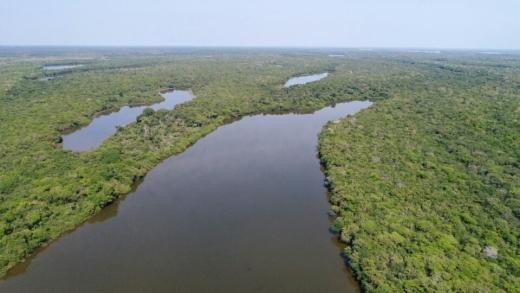 Governo do Tocantins, por meio da Semarh, investe em políticas públicas com foco na prevenção, educação ambiental e a redução dos índices de desmatamento no Cerrado