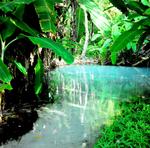O Fervedouro é outro atrativo do Jalapão, com águas transparentes, nas quais é impossível afundar
