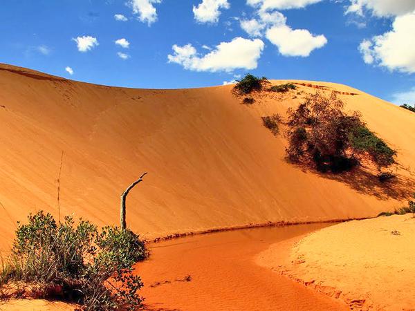 As dunas do Jalapão são um espetáculo natural cuja altitude varia de 200 a 400 metros