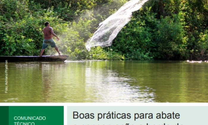 A publicação conta com cinco autores das instituições parceiras como Embrapa, Ruraltins e UFT