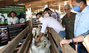 Vice-governador Wanderlei Barbosa agradeceu pelo empenho da Adapec com a promoção da campanha de vacinação - Washington Luiz/Governo do Tocantins