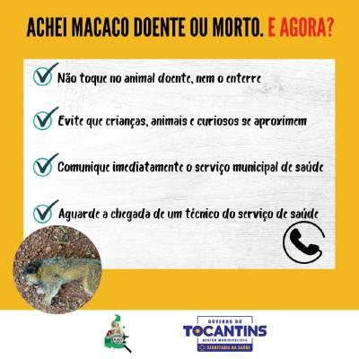 Campanha ao combate da Febre Amarela (04)