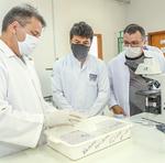 Equipe de pesquisadores, coordenada pelo cientista, Raimundo Wagner, desenvolvem projeto inédito no Tocantins