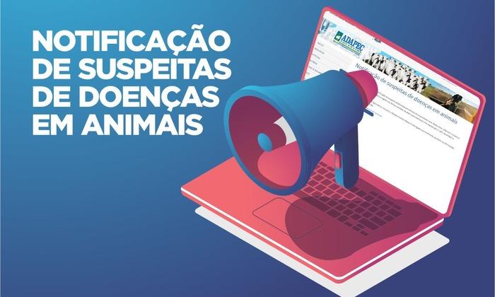 NOTIFICAÇÃO_700x420.jpg
