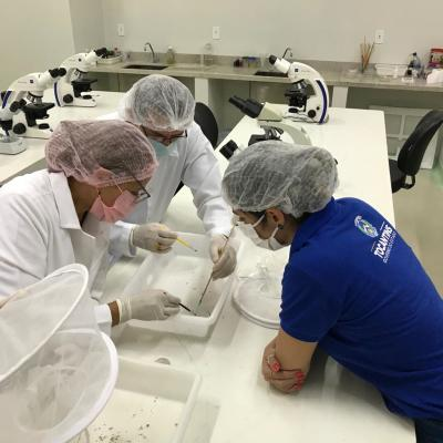 Visita técnica ao laboratório de parasitologia 01_400.jpg