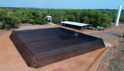 Viveiro com capacidade para 200 mil mudas nativas do cerrado por ano é  fruto da parceria entre a Semarh e a Universidade Federal do Tocantins
