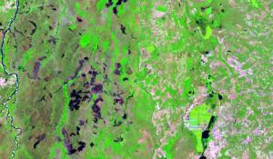 Imagem Ilustrativa Landsat_C8_Acervo Cimdea-Naturatins_300.jpg