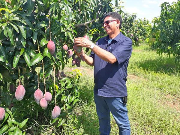 Ruraltins realizou 980 visitas técnicas presenciais a propriedades rurais em 2020