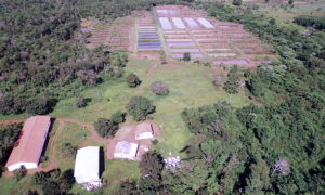 Implantação da Unidade de Pesquisa e Extensão Rural foi uma das grandes conquistas do órgão - Ruraltins/Governo do Tocantins